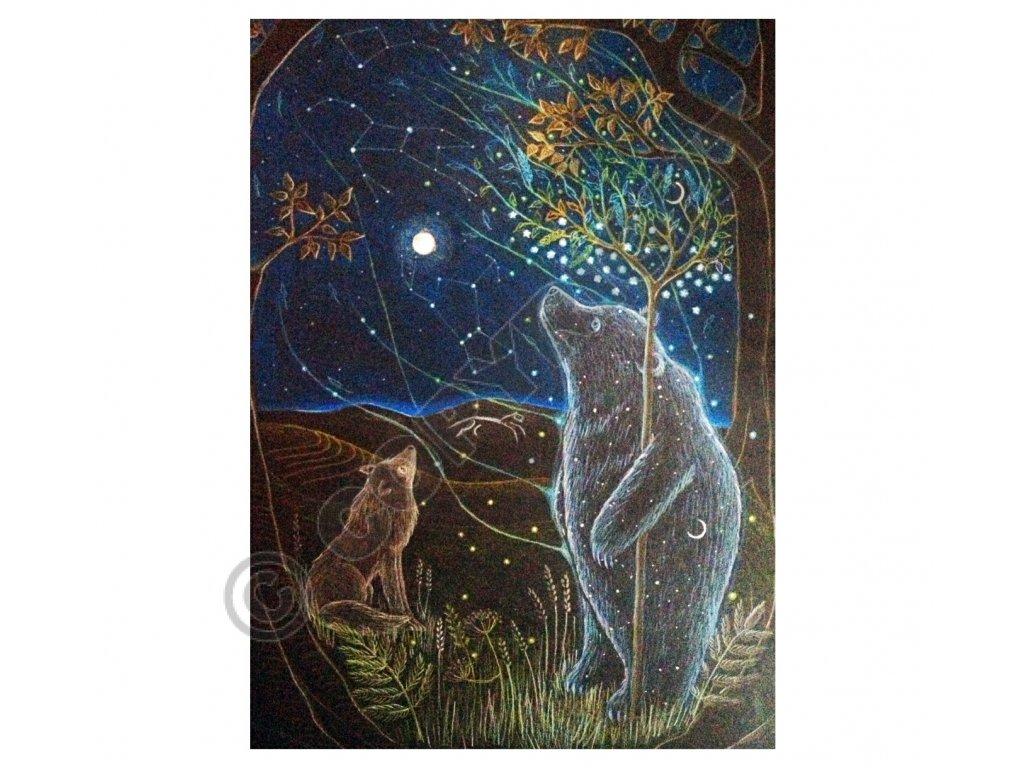 Přání Velký medvěd