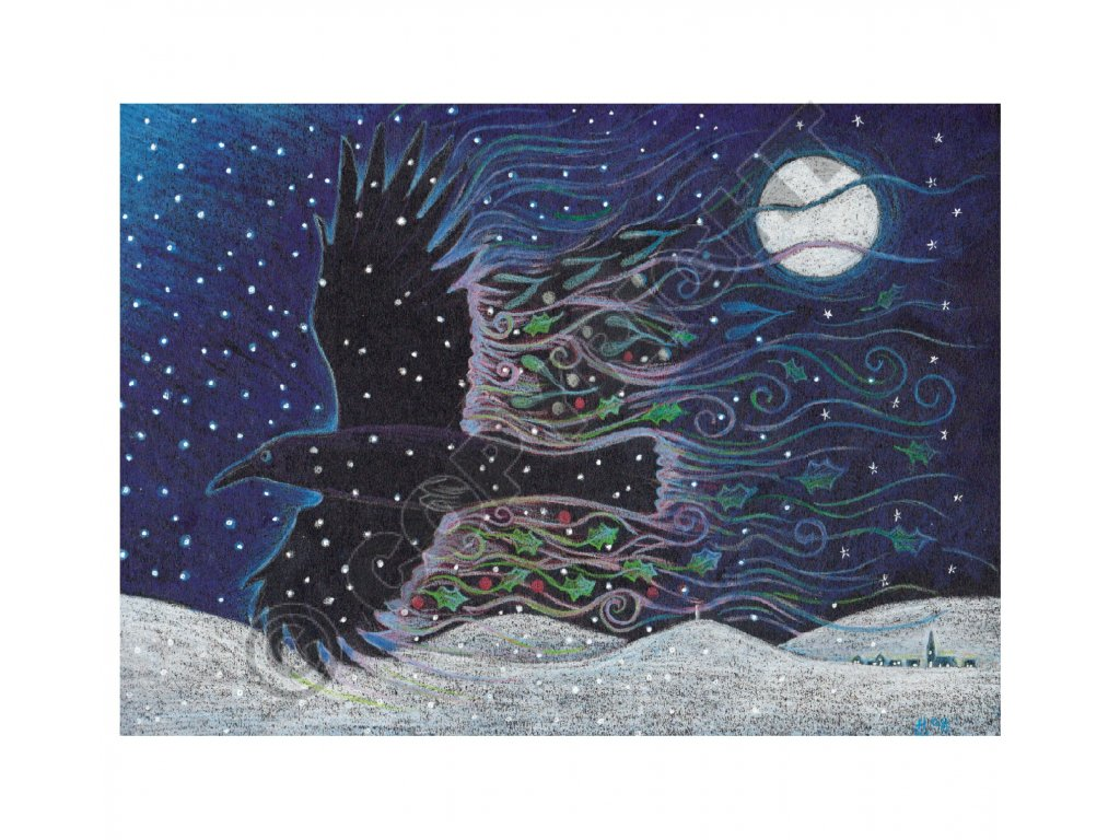 vrana v zimnim slunovratu