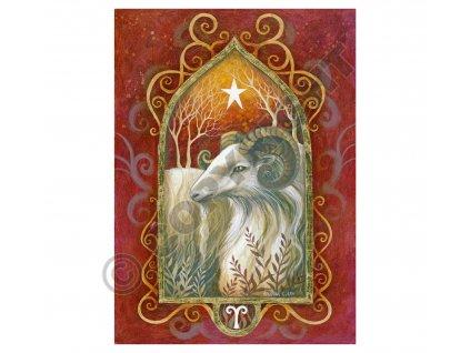 mysticke prani 24