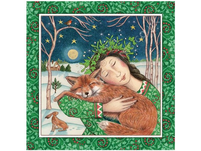 Starry Fox Hug